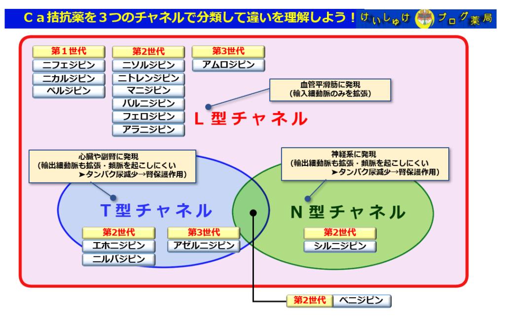 Ca拮抗薬をチャネルごとに分類した図です